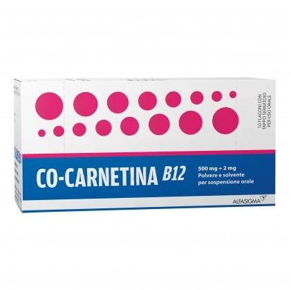 COCARNETINA B12*OS 10 FLACONCINI 10 ML